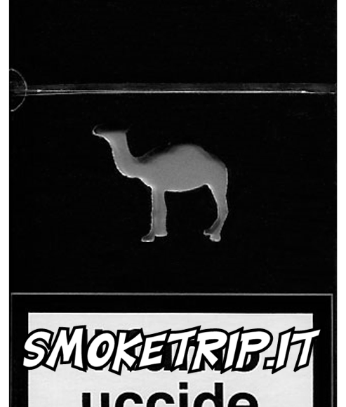 Sigarette Camel Black : La Recensione.