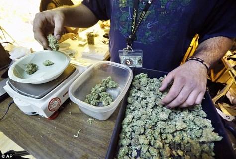 Quanto costa la Marijuana nel mondo? Scopriamo insieme i prezzi!
