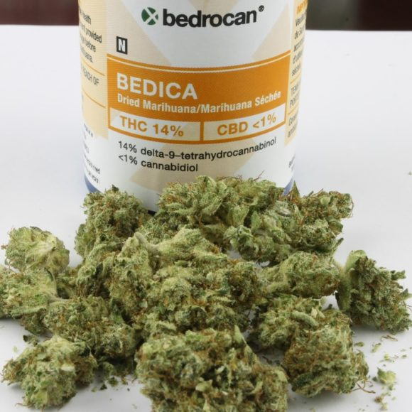 Cannabis Terapeutica: Potenzialità e Benefici