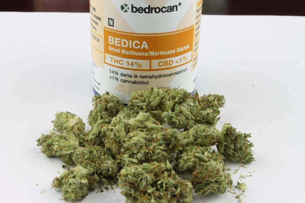 Cannabis Terapeutica Bedrocan