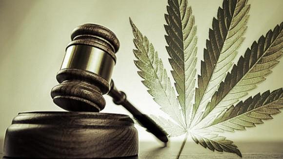 cannabis legale in america