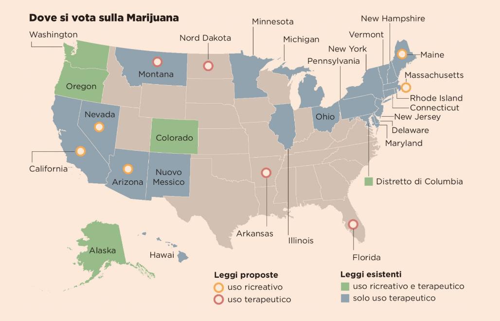 Infografica referendum cannabis Fonte: Pagina 99