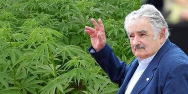 mujica uruguay marijuana legalizzazione