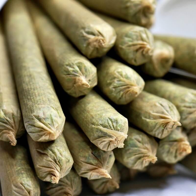 canne marijuana