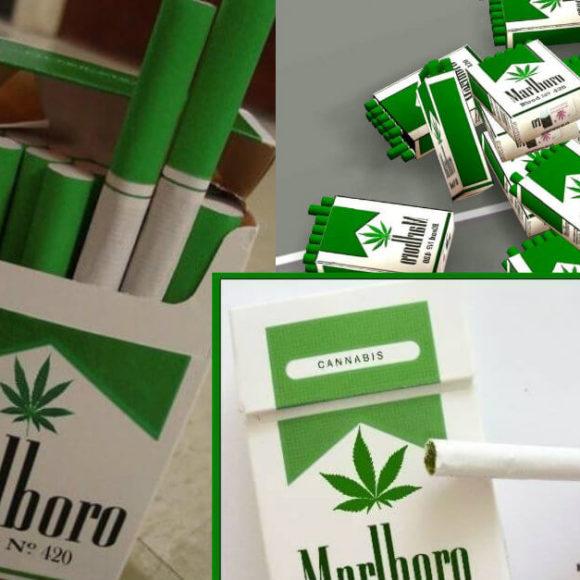 Bufale sulla Marijuana: Smontiamole insieme
