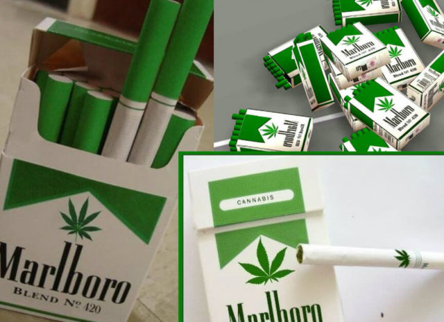 bufale sulla marijuana