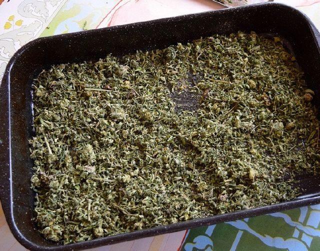 decarbossilare marijuana
