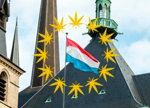 legalizzazione marijuana lussemburgo
