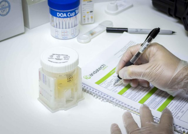 test droga thc