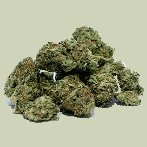 cannabis marijuana cime