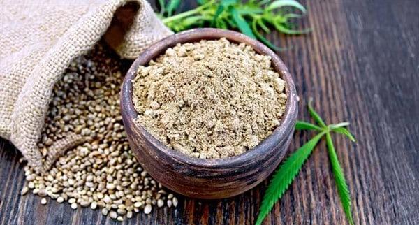 usi della cannabis sativa nell'industria alimentare