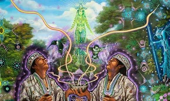 Sogni lucidi con la Calea Zacatechichi, una pianta allucinogena legale.