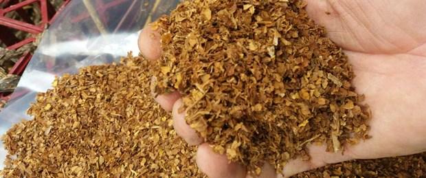 umidificare il tabacco secco