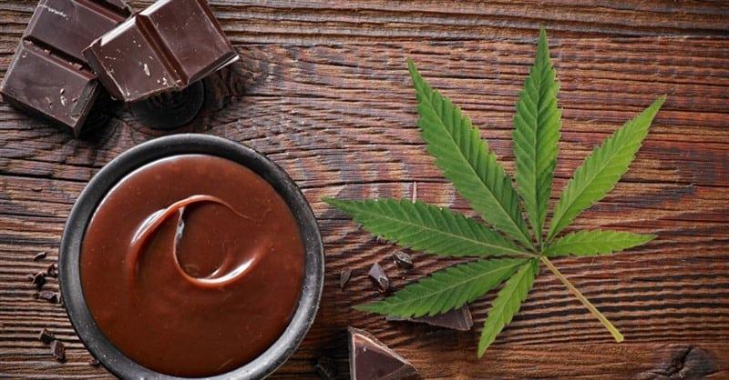 cioccolato modica alla canapa