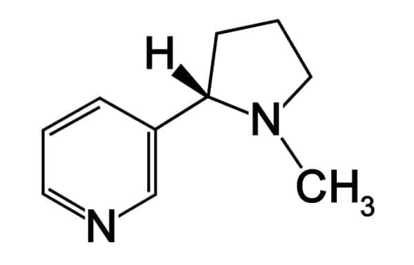 Nicotina formula chimica