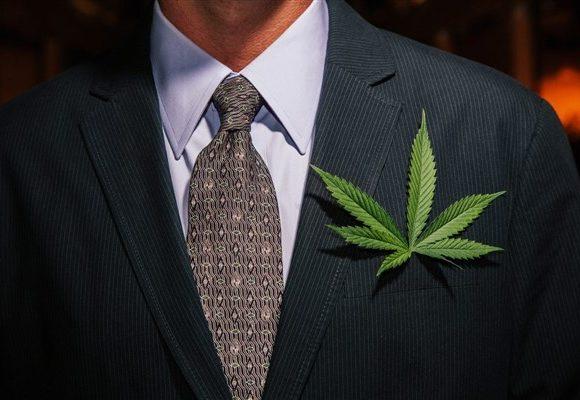 Sommelier della marijuana: ecco come diventare erbaristi.