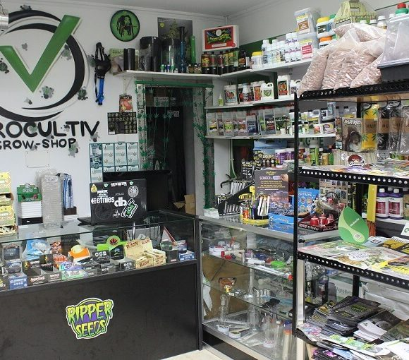 Aprire un Grow Shop: Ecco i requisiti e costi