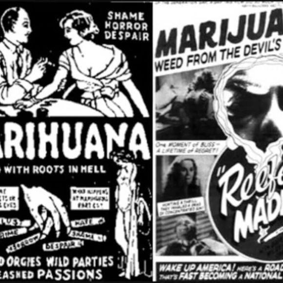 Il declino del proibizionismo della cannabis nel mondo