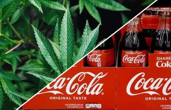 Coca Cola sta per lanciare sul mercato una bevanda alla cannabis?