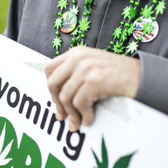 A proposito della NORML (Organizzazione Mondiale per la Riforma delle Leggi sulla marijuana)