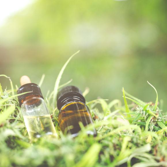 Effetto entourage della cannabis? Di cosa si tratta?