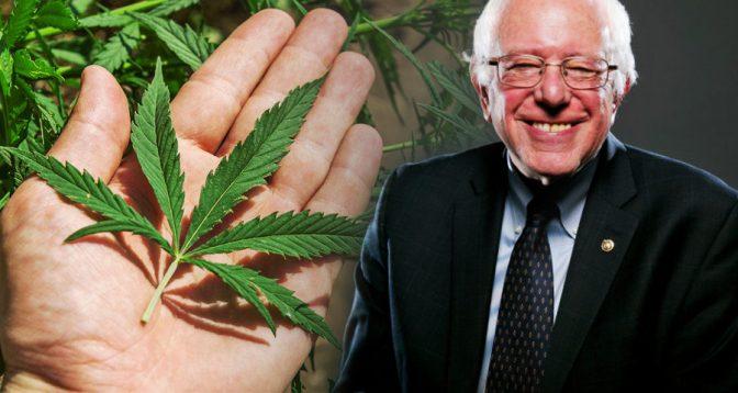 Bernie-Sanders-On-The-Times-He-Smoked-Marijuana-672x358