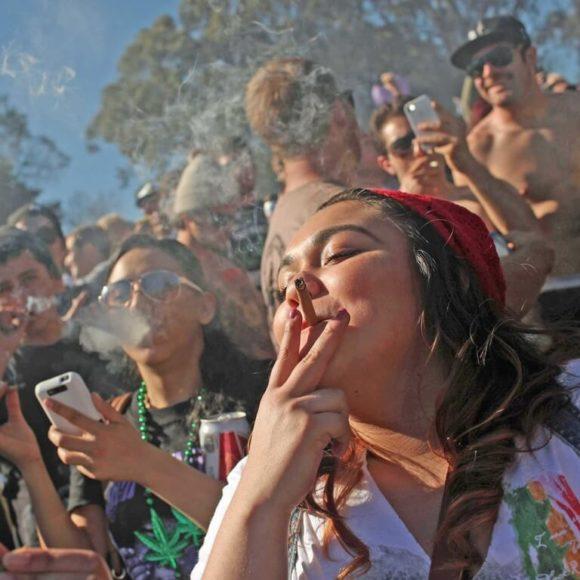 Secondo ultimi studi, l'uso di cannabis in adolescenza non modifica il cervello