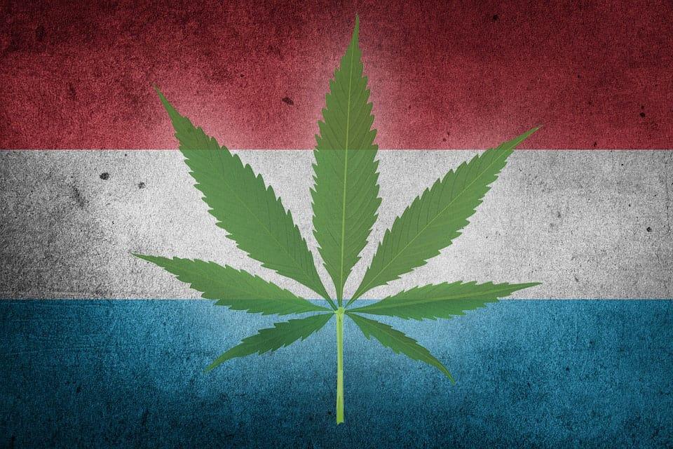 cannabis Lussemburgo
