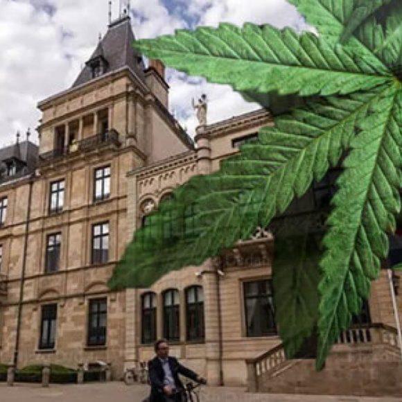 Il Piano del Lussemburgo per Legalizzare la Cannabis in Tutta Europa