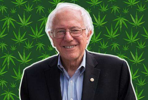 bernie sanders legalizzazione cannabis