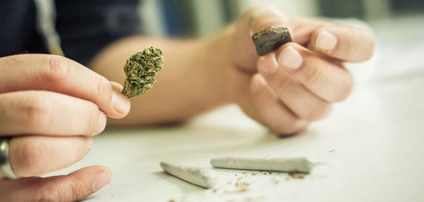 differenze hashish marijuana