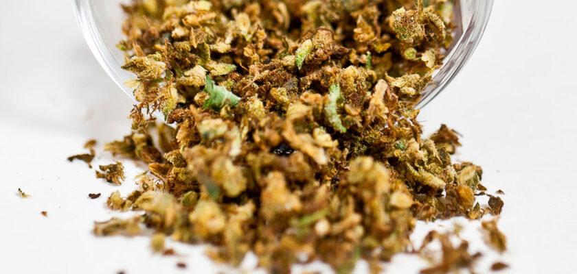 cannabis sintetica tipi